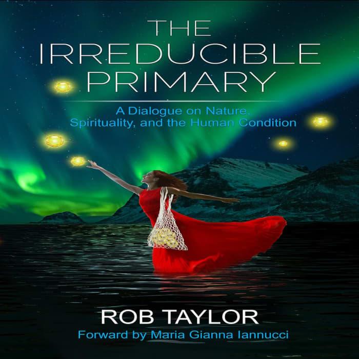 The Irreducible Primary