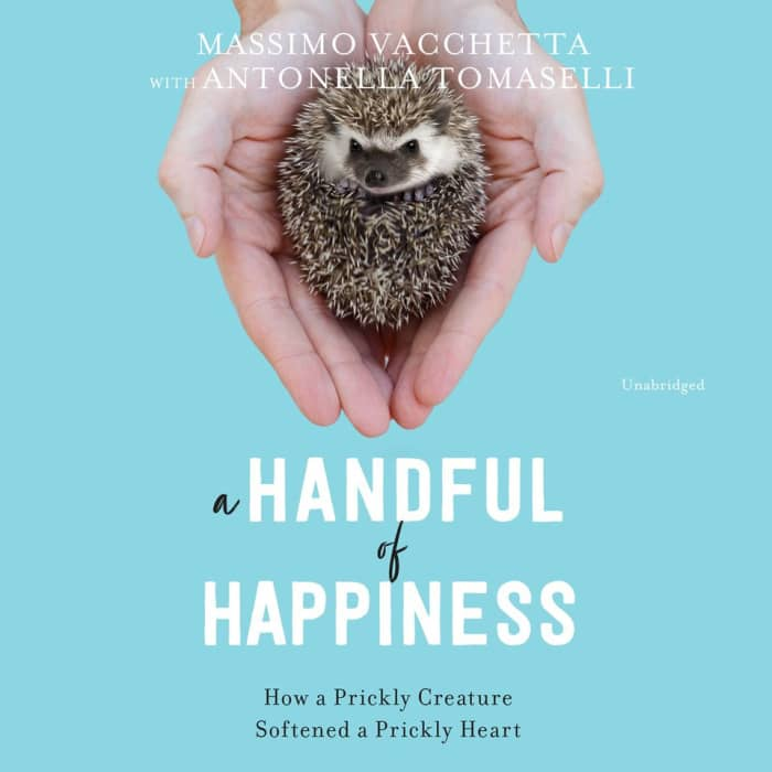 Handful of Happiness,  A